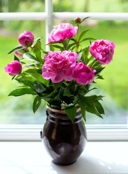 how to keep flowers fresh longer