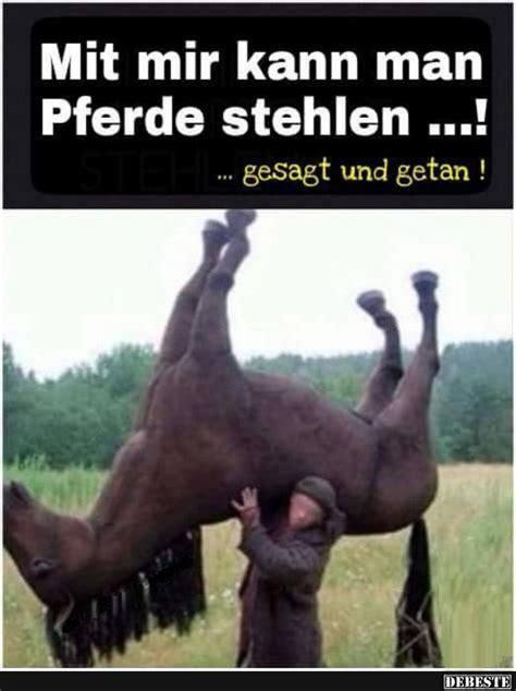 coole stehlen mit mir kann pferde stehlen lustige bilder spr 252 che