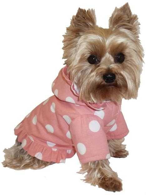yorkie clothes patterns free clothes for yorkies www imgkid the image kid has it