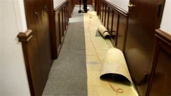 Taking Up Carpet The Best And Easiest Way For Glued Carpet Rip Up Take