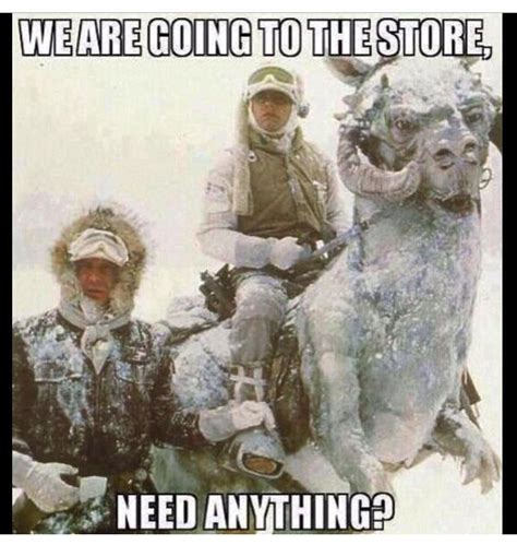 Memes Cold Weather - embrace winter humor google search winter pinterest