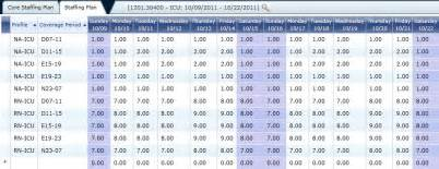 staffing profile template best photos of staffing grid template staffing