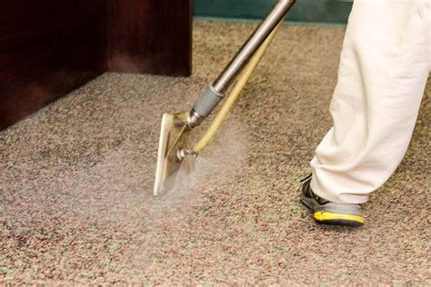 Pro Clean Carpet Cleaning Floor Services by Professional Carpet Cleaning Clean Energy Maintenance Inc