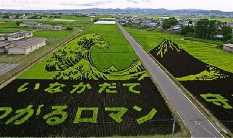 shangralafamilyfun shangrala s undersea restaurant shangralafamilyfun shangrala s japan s crop