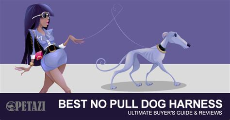 best no pull harness best no pull harness 2017 the ultimate buyer s guide reviews