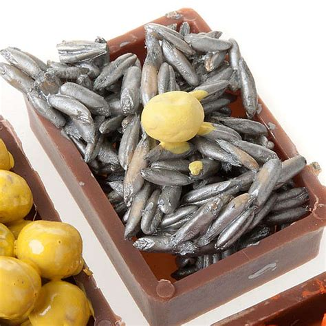 cassette per frutta cassette di frutta verdura pesce accessori presepi cibo
