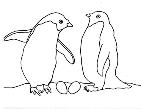 arctic animal coloring pages with regard to really
