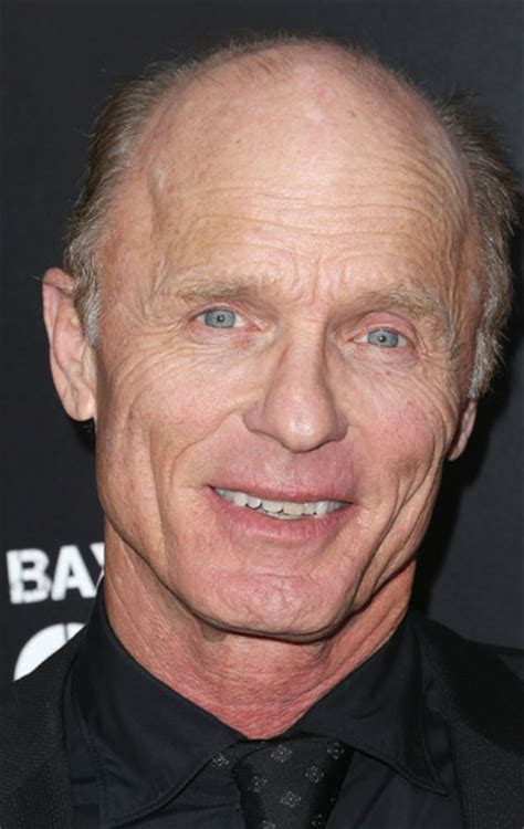 actor ed harris ed harris pictures arrivals at the pain gain