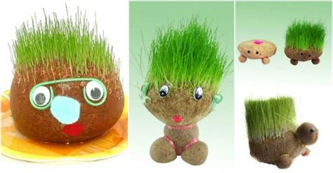 diy sock hedgehog how to make diy hedgehog sock planters how to