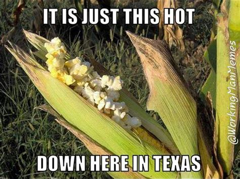 Texas Weather Meme - 972 best images about funny humor memes ecards gifs on