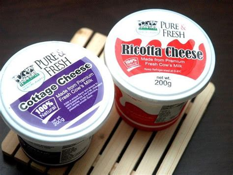 ricotta vs cottage cheese 134 best ideas about difference between on