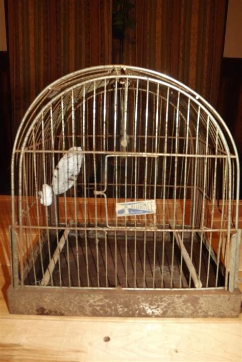 bird cage swing cages vintage reliance metal bird cage with perches and