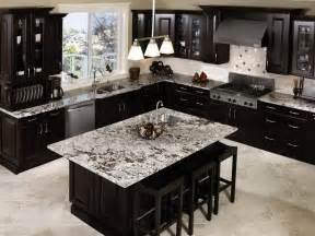 Dark Cabinet Kitchen by 20 Beautiful Kitchens With Dark Kitchen Cabinets