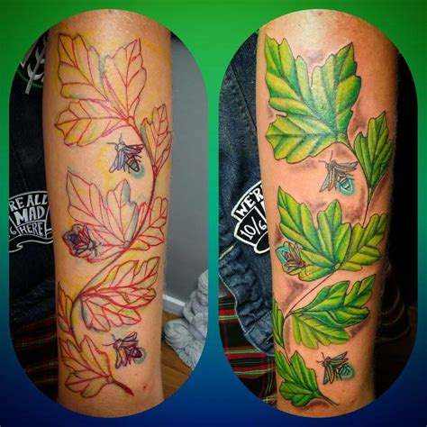 cost tattoo touch up touch of grey tattoos fairview north carolina nc