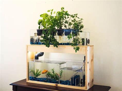 aquaponics garden  planter aquaponics system desktop
