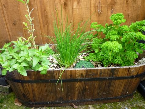 Garden Herb Planter by Ewa In The Garden 10 Beautiful Ideas For Herb Garden