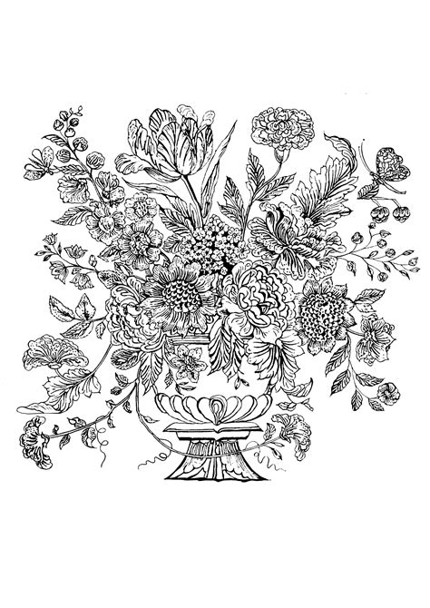 cornici a fiori cornici fiori disegni