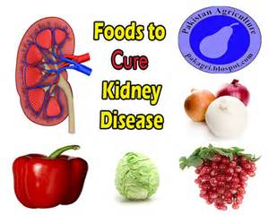 healthy kidney foods images