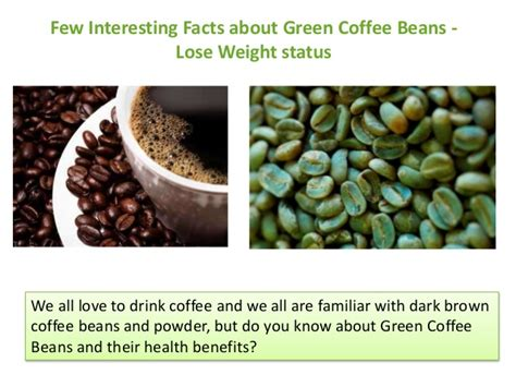 facts about green few interesting facts about green coffee beans as weight