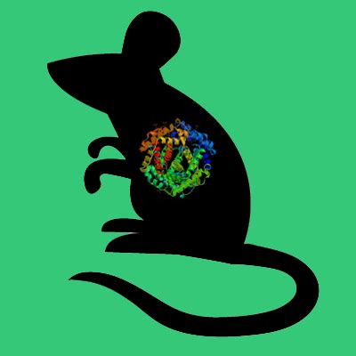 protein z dependent protease inhibitor mouse protein z dependent protease inhibitor