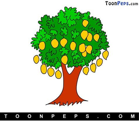 Mango Tree Clipart toonpeps how to draw mango tree for step by step