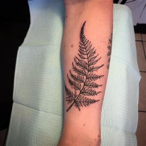 places for tattoos fern growth in difficult places tattoos