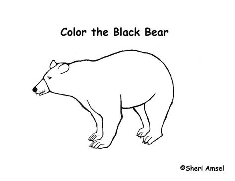 coloring pages black bear exploring nature educational resource error