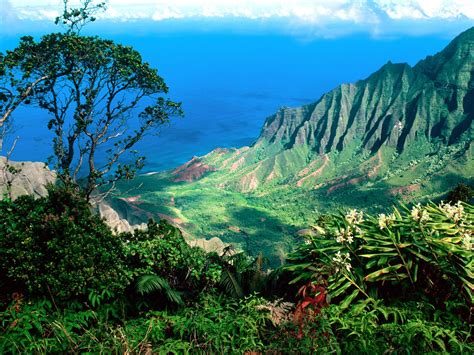 hawaii landscape hawaii amazing pics travel photo and picture