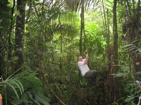 tarzan tom swinging   jungle photo