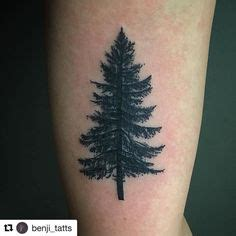 henna tattoo cñƒð xoñƒñ ð â ð ð ñ ð ñ c khñƒð ng evergreen trees drawing search ideas