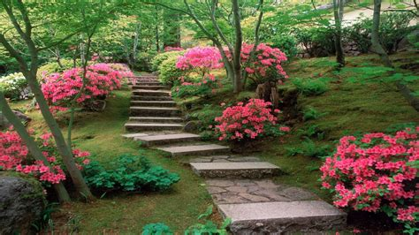 Flower Garden In Japan Japanese Garden Japanese Plants And Flowers Beautiful Japanese Flower Garden Garden Ideas