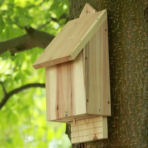 bat box natural timber bat box supplier uk ark wildlife