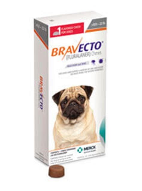 bravecto small bravecto 174 fluralaner the only 12 week flea tick protection for dogs and cats
