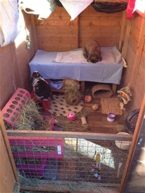 Rabbit Shed Ideas by 1000 Ideas About Rabbit Shed On Rabbit Hutches Rabbits And Rabbit Run