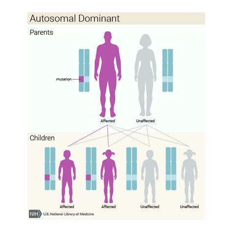 definition pattern disease what are the different ways in which a genetic condition