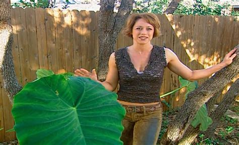 trading spaces full episodes trading spaces is coming back to tlc and we have a few