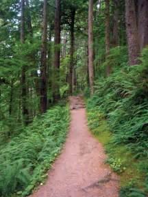 Hiking Trails Oswald West Hiking Trail Our Coastour Coast