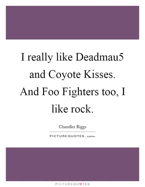 I Really Like Deadmau5 And Coyote Kisses And Foo Fighters | i really like deadmau5 and coyote kisses and foo fighters
