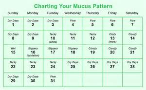 what color is your mucus ヾ ノhow to calculate safe ᗕ period period to avoid