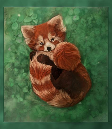 sop entry red panda by daisy7 on deviantart