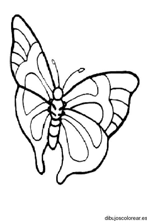 imagenes de mariposas monarcas para colorear mariposas