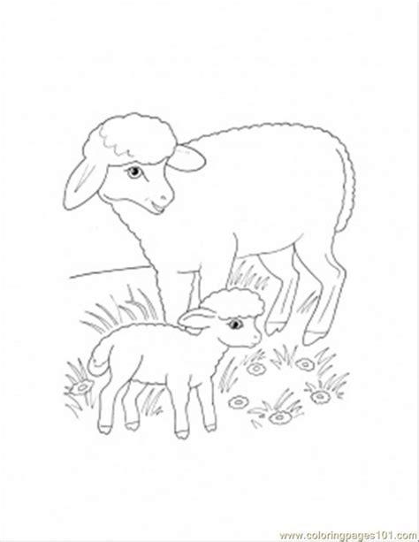 mother sheep and lamb coloring page 840jt lion lamb