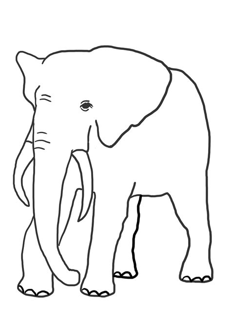 Elephant Coloring Page by Elephant Coloring Pages