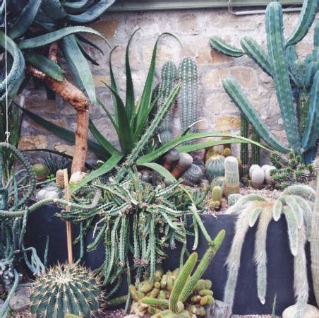 giardino botanico bergamo orto botanico bergamo foto di orto botanico di bergamo