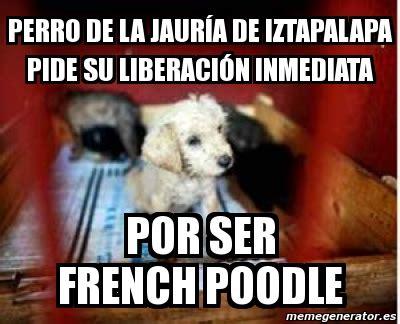 Memes De Iztapalapa meme personalizado perro de la jaur 237 a de iztapalapa pide