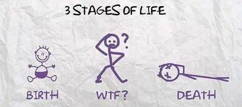 stages  life meme guy