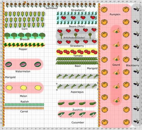 Planning A Vegetable Garden Garden Plan 2013 2013 Vegetable Garden