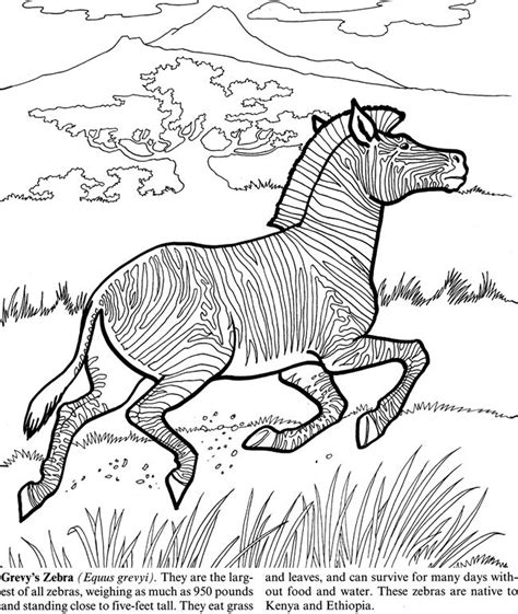 coloring pages endangered animals endangered animals