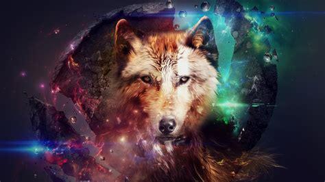 imagenes full hd de lobos lobo con luces de colores fondo de pantalla 1366x768 id 2950