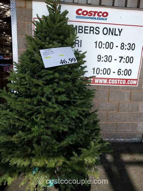 xmas trees at costco
